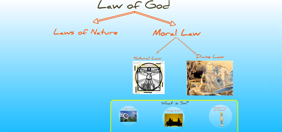 natural law in veritatis splendor essay The teaching of veritatis splendor on natural law pope john paul  one of the most hostile attacks on the encyclical is provided by the essays in the splendor of.